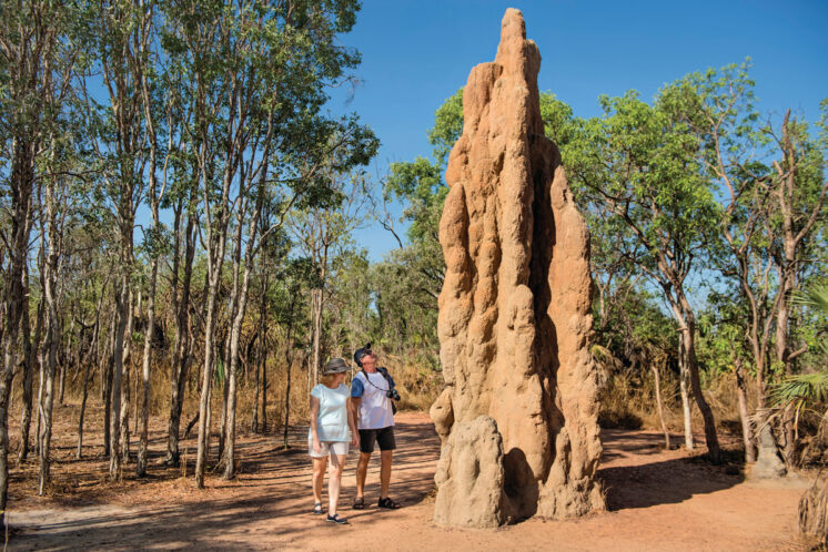 121335-2-Litchfield-National-Park-Termite-Mounds