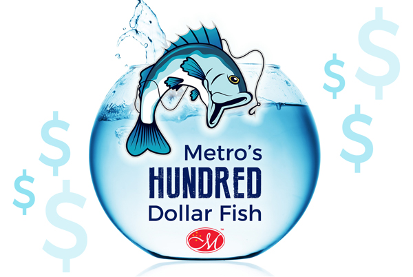 Metro-Hundred-Dollar-Fish3