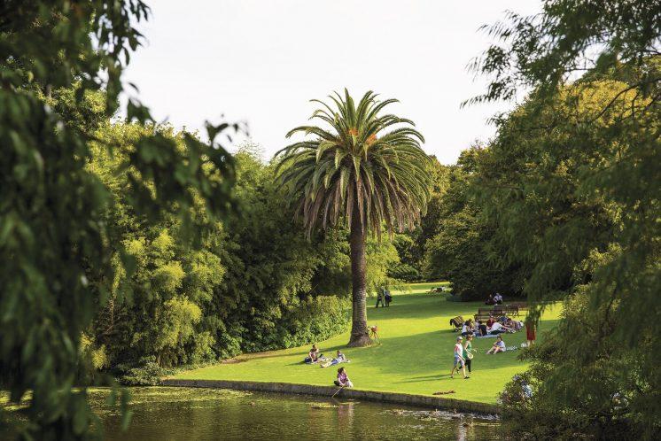 botanic-garden-1.jpg